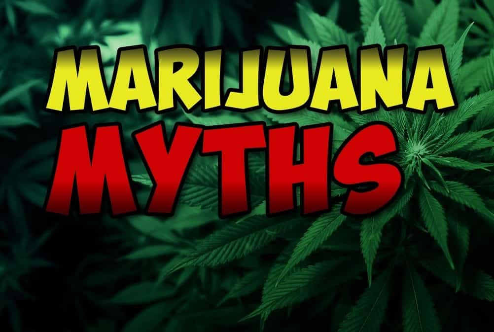 Marijuana Facts OR Myths? The Truth About Cannabis Use