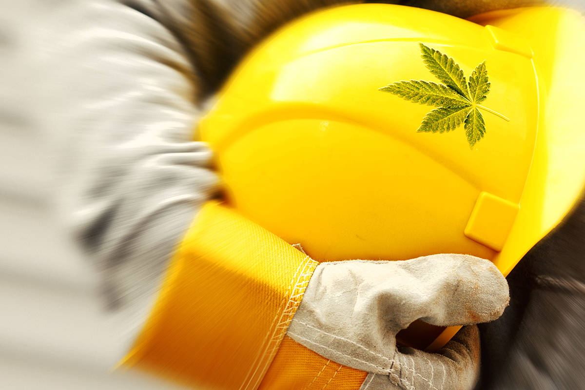 How Can I Use Cannabis Safely?