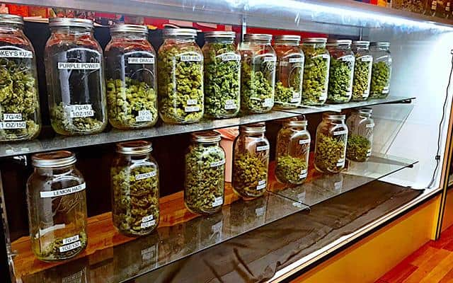 The Complete Listing of Marijuana Dispensary in Miami