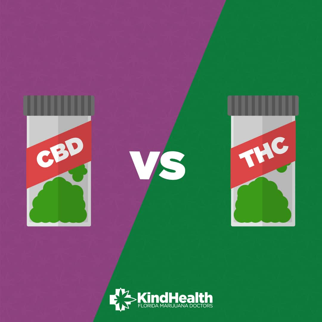 What You Need to Know About Low THC Cannabis