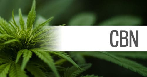 health benefits of cbn cannabinol